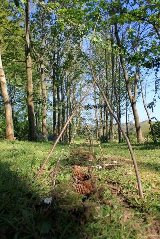 land art 2013 1